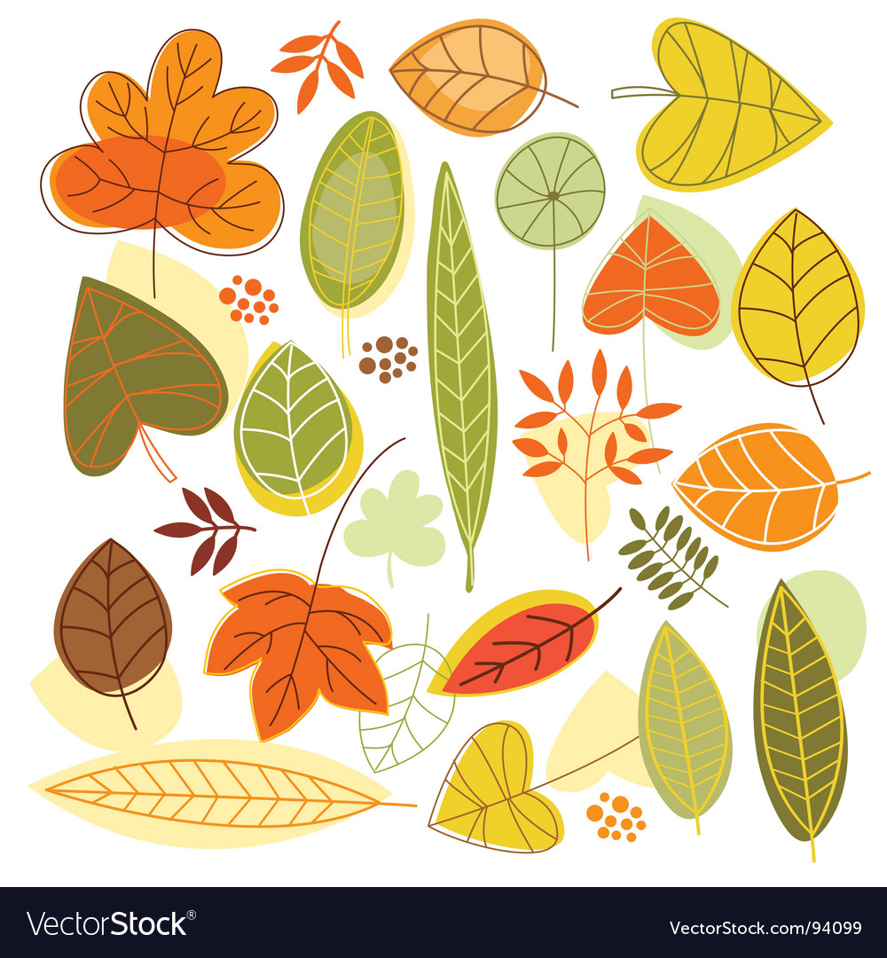 Set autumnal leaves vector | Price: 1 Credit (USD $1)