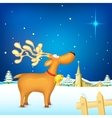 Reindeer in christmas night vector