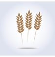 Wheat icon vector