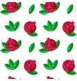 Pomegranates seamless pattern vector
