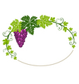 Grapes frame with leaves vector