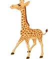 Cute giraffe isolated vector
