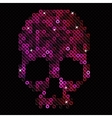 Skull pink beads sequins vector