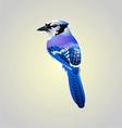Blue birdy vector
