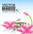 Lotus flower and dragonflies vector