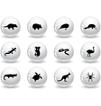 Web buttons australian animal icons vector