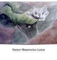 A lotos flower vector