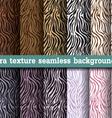 Animal print zebra texture seamless background vector