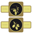 Olive oil - label vector