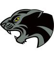 Head jaguar vector