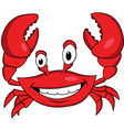 Red crab cartoon vector