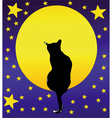 The cat the full moon and a starry sky vector
