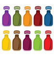Set of bottles with juice vector