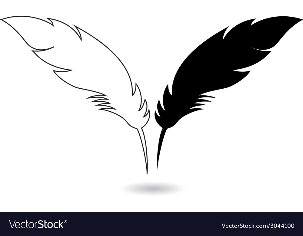 Feathers vector | Price: 1 Credit (USD $1)