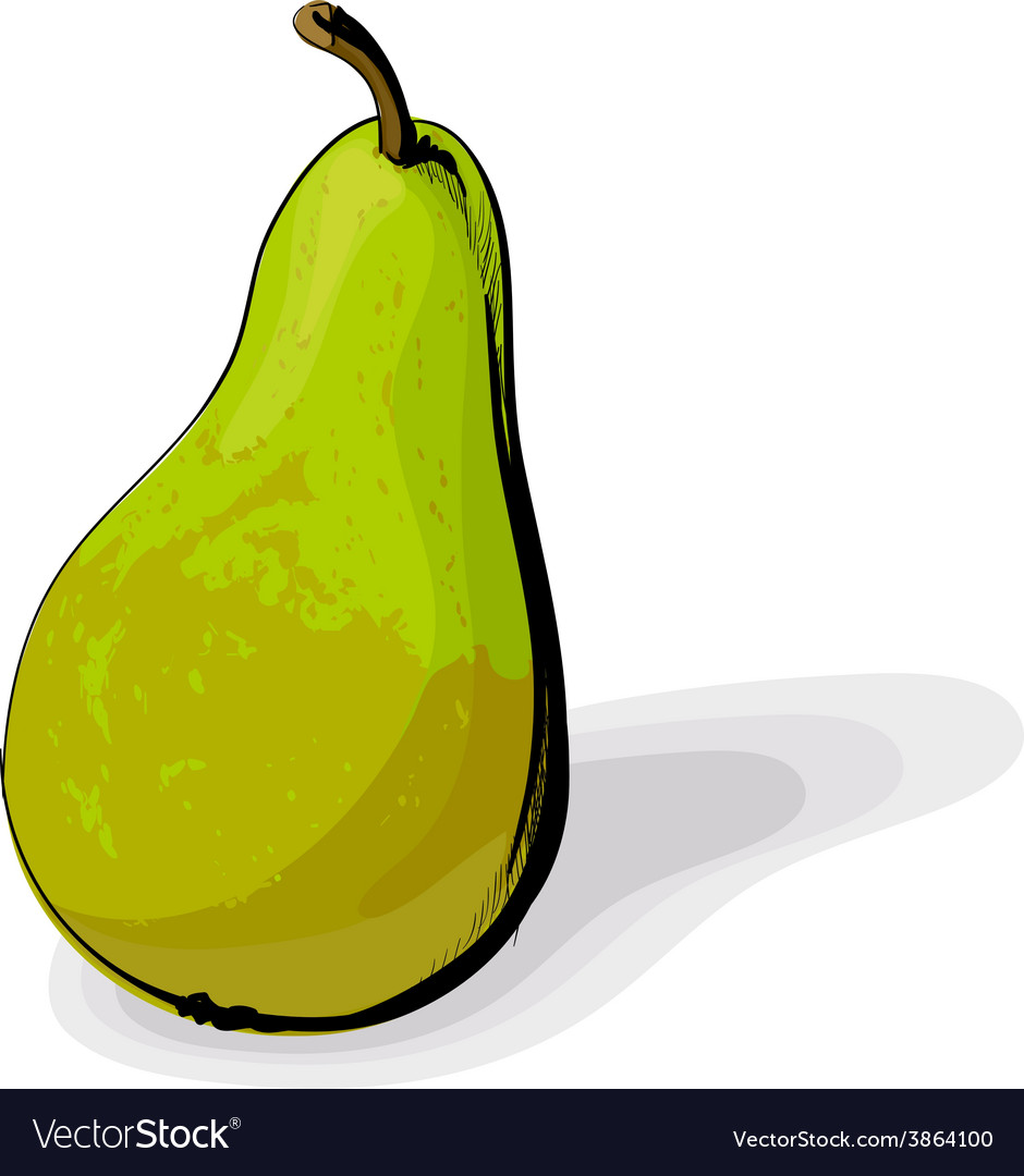 Green pear vector | Price: 1 Credit (USD $1)