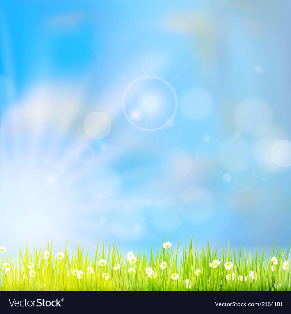 Summer grass in sun light eps 10 vector | Price: 1 Credit (USD $1)