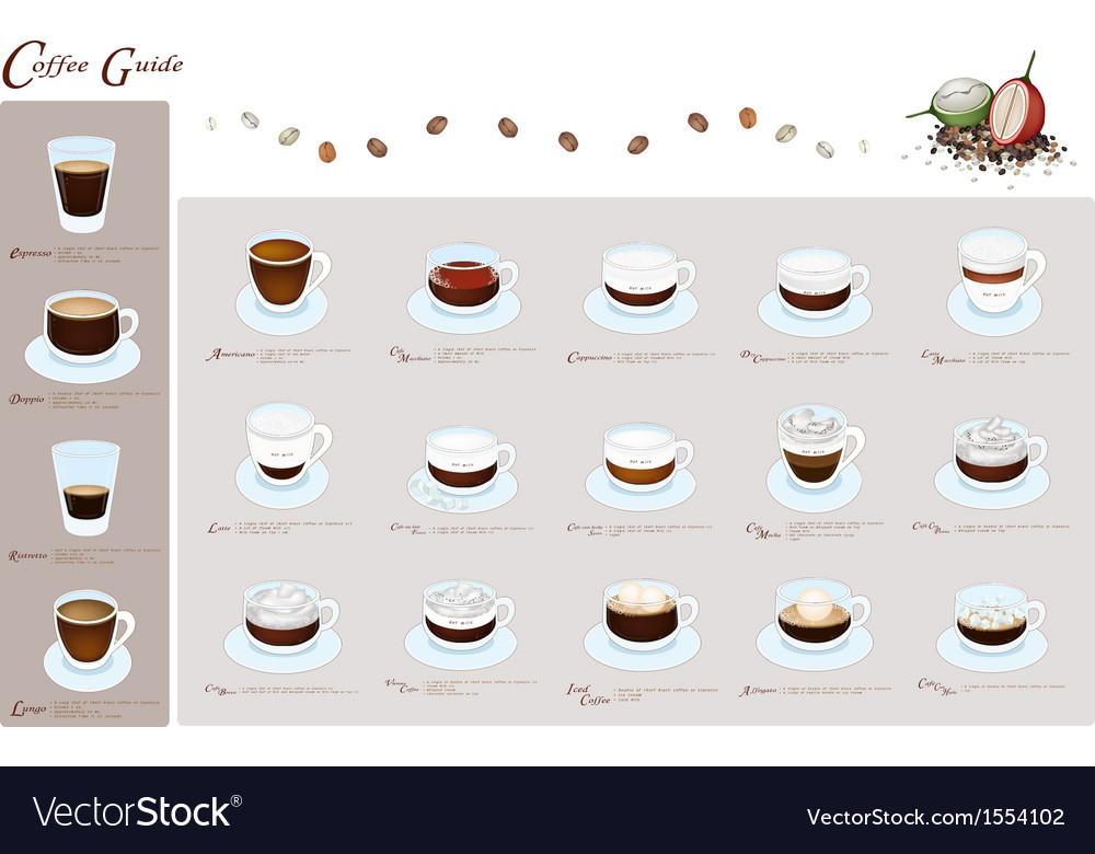Nineteen kind of coffee menu or coffee guide vector | Price: 1 Credit (USD $1)