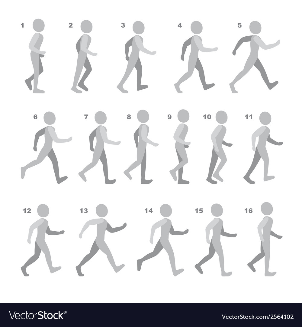 Phases of step movements man in walking sequence vector | Price: 1 Credit (USD $1)