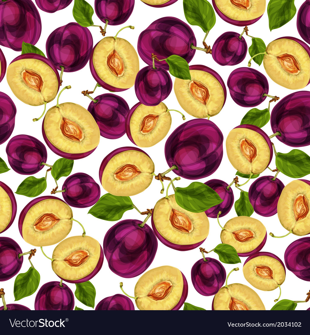 Seamless plum fruit sliced pattern vector | Price: 1 Credit (USD $1)