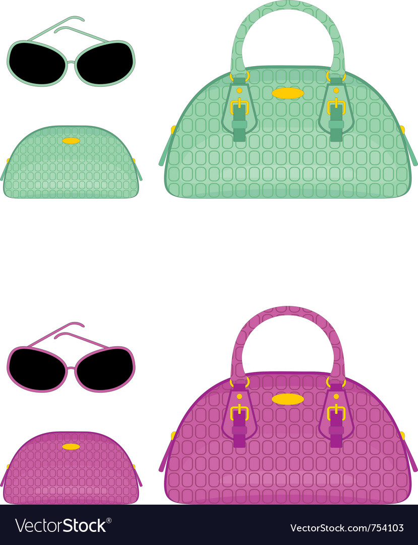 Female bags beauticians and sun glasses vector | Price: 1 Credit (USD $1)