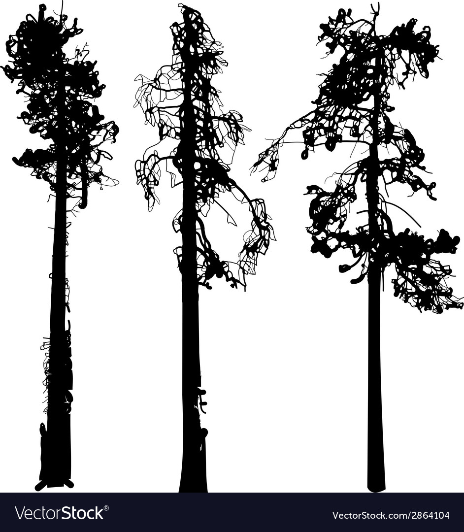 Tree silhouette ink graphic vector | Price: 1 Credit (USD $1)