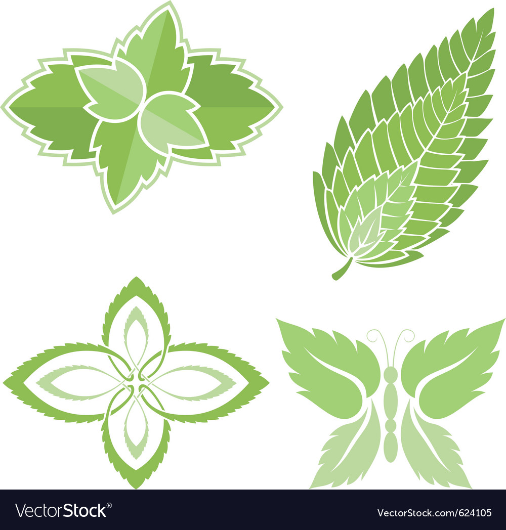 Mint leaves icons vector | Price: 1 Credit (USD $1)
