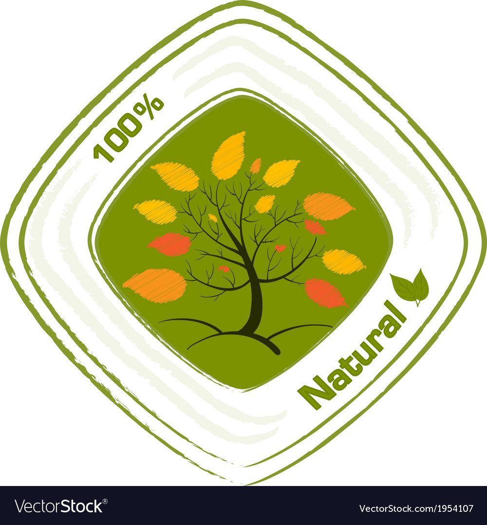 A natural label design vector | Price: 1 Credit (USD $1)