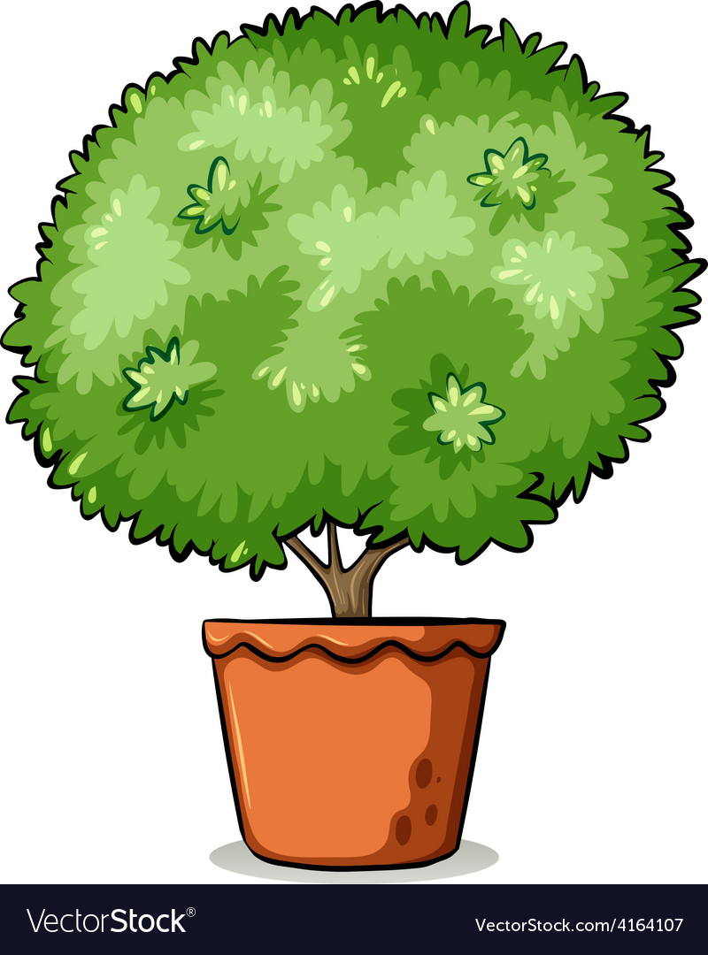 Pot with a green plant vector   Price: 1 Credit (USD $1)
