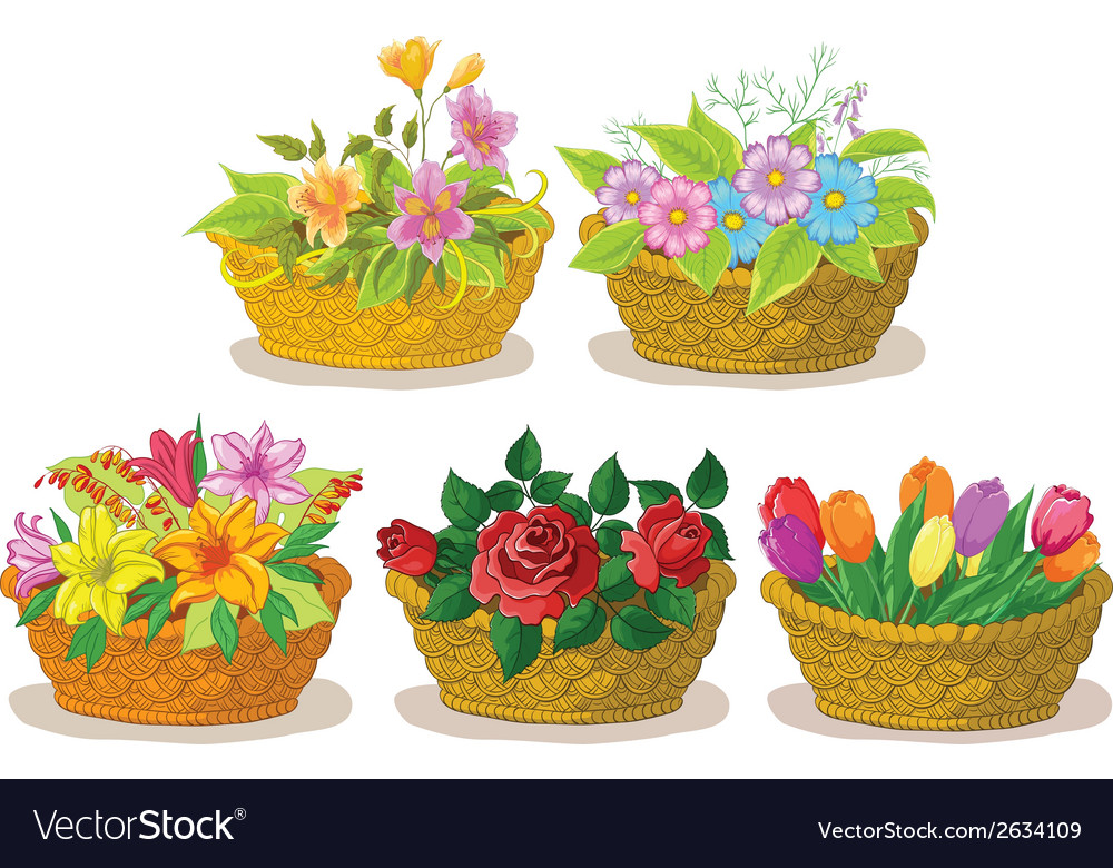 Baskets with flowers set vector | Price: 1 Credit (USD $1)