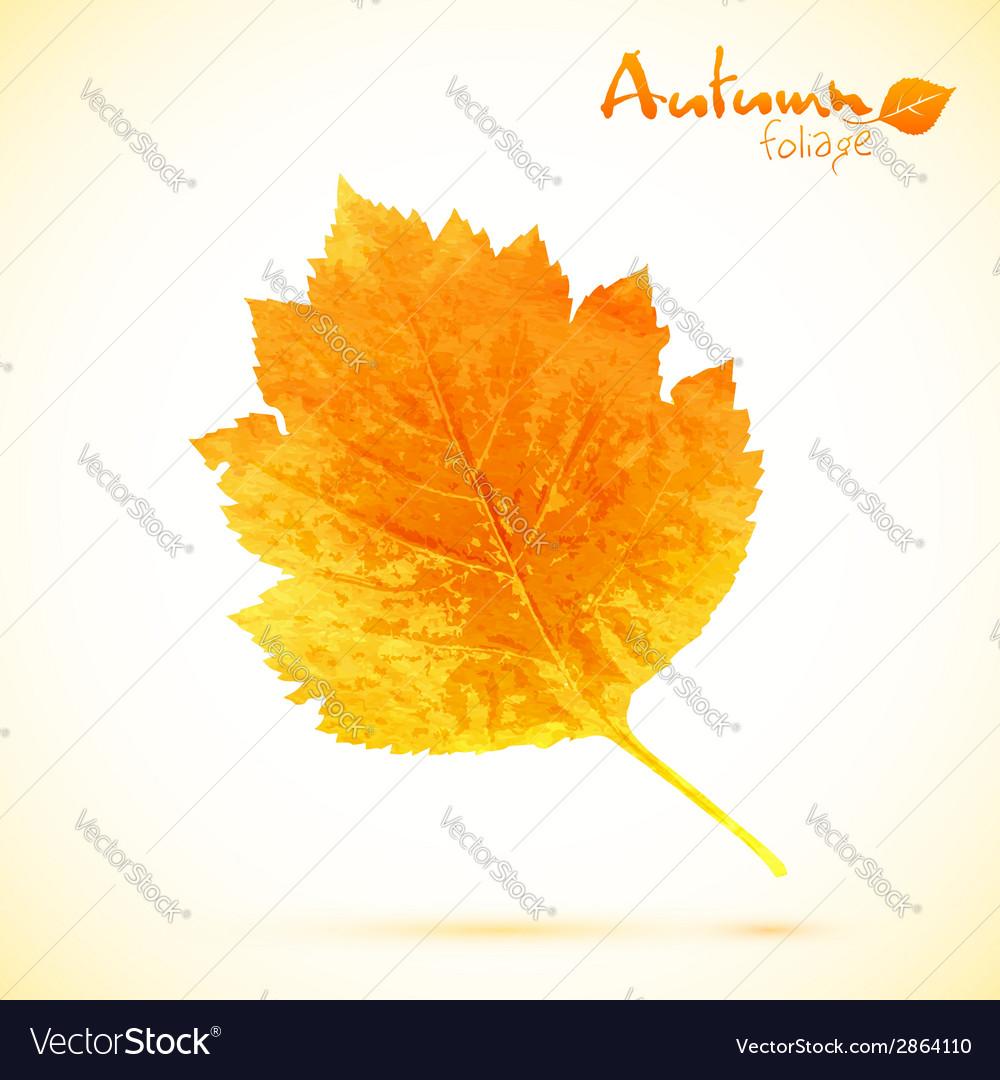 Autumn watercolor leaf vector | Price: 1 Credit (USD $1)