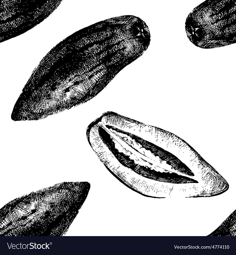 Hand drawn pepino melon seamless vector | Price: 1 Credit (USD $1)