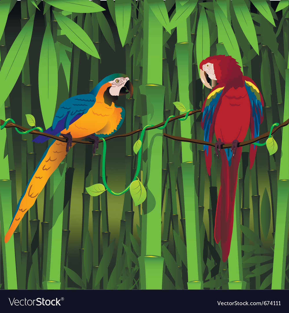 Parrots on a branch of liana vector | Price: 3 Credit (USD $3)