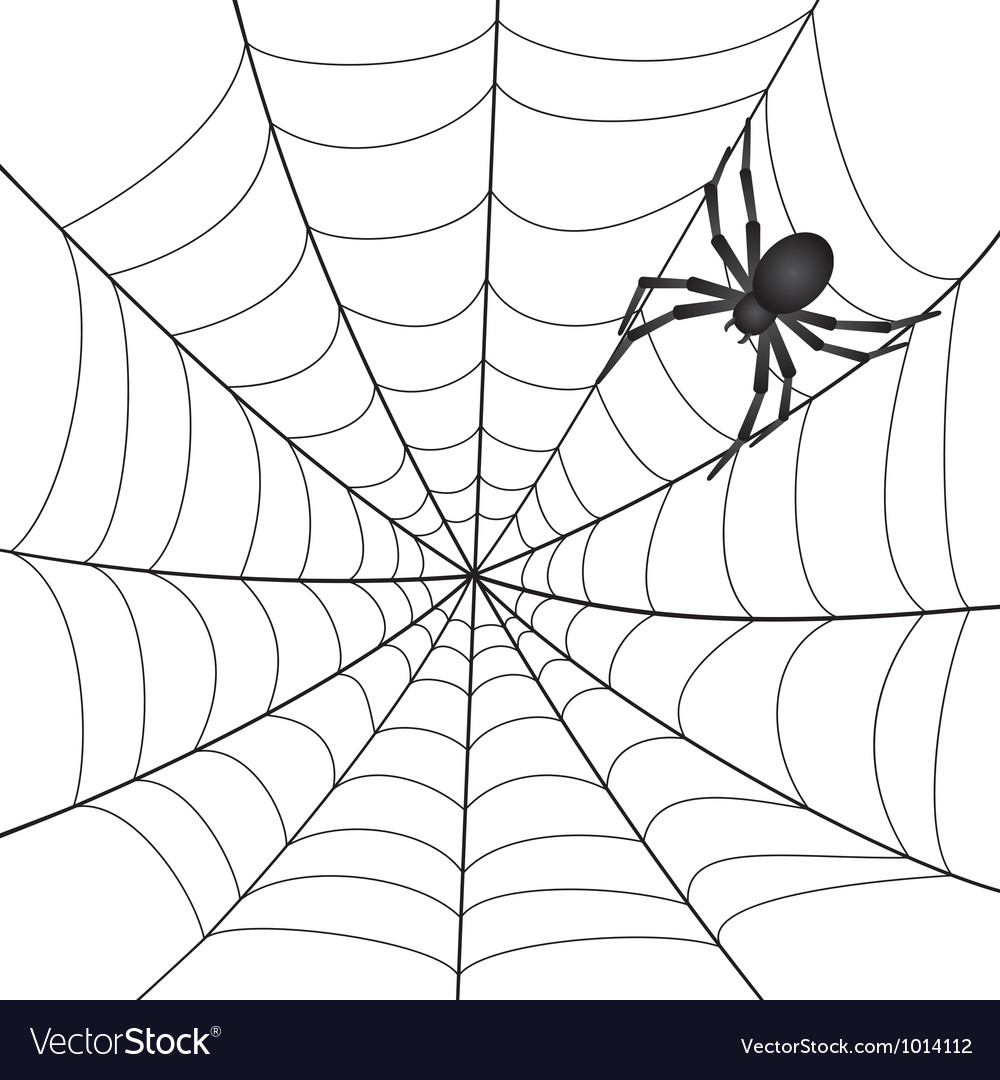 A spiderweb with spider vector | Price: 1 Credit (USD $1)