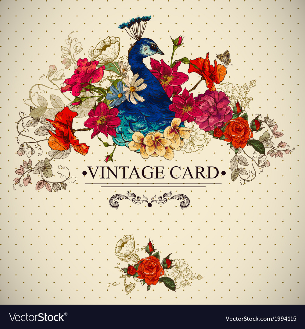 Floral vintage card with peacock vector | Price: 1 Credit (USD $1)