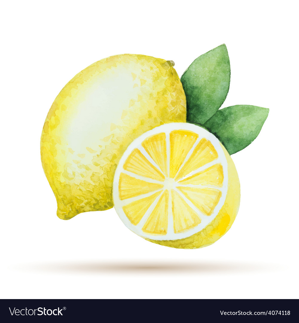 Watercolor lemon yellow vegetable menu vector | Price: 1 Credit (USD $1)