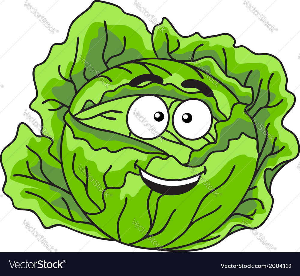 Fresh green leafy cabbage vegetable vector | Price: 1 Credit (USD $1)