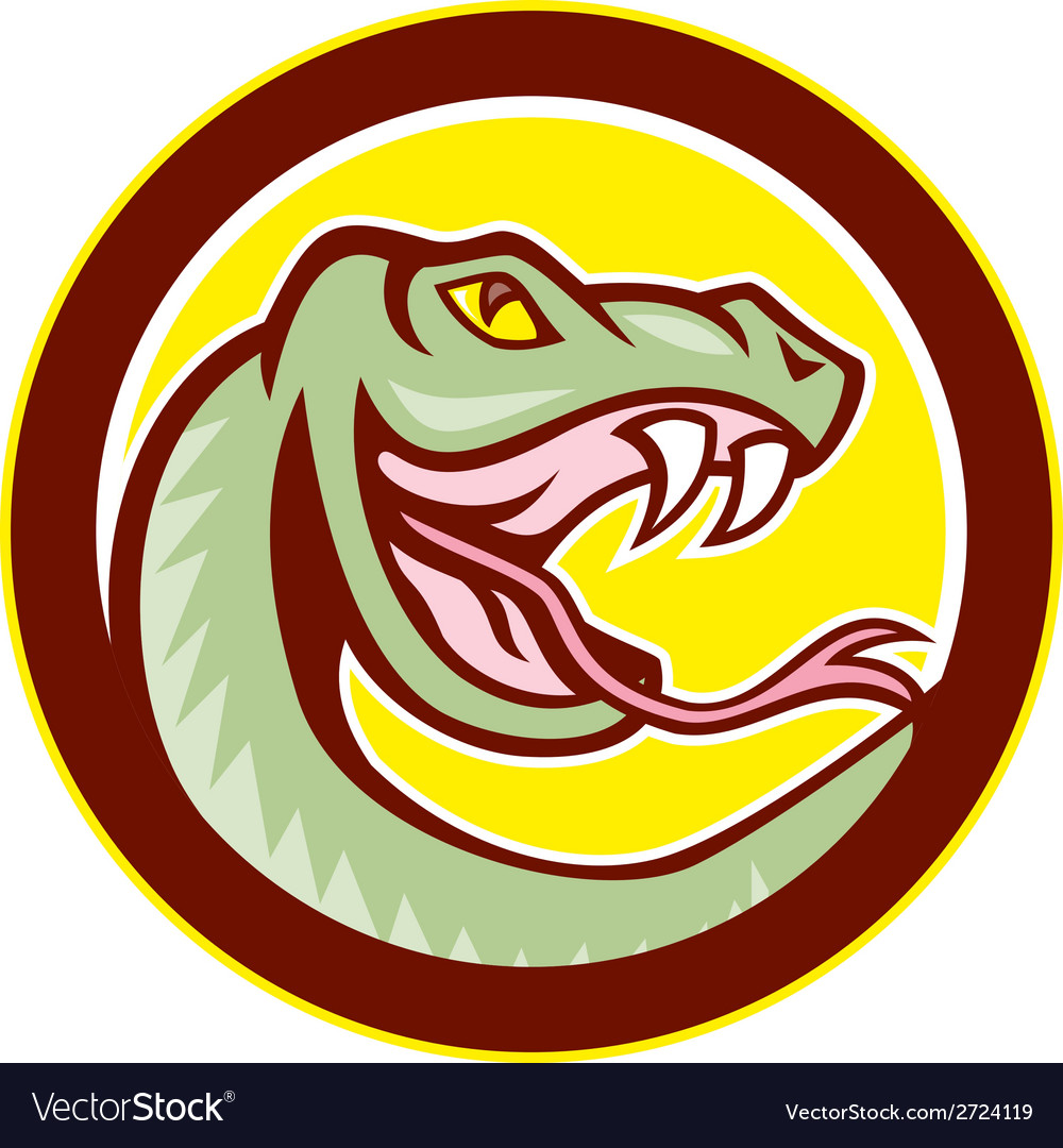 Rattle snake head circle cartoon vector | Price: 1 Credit (USD $1)