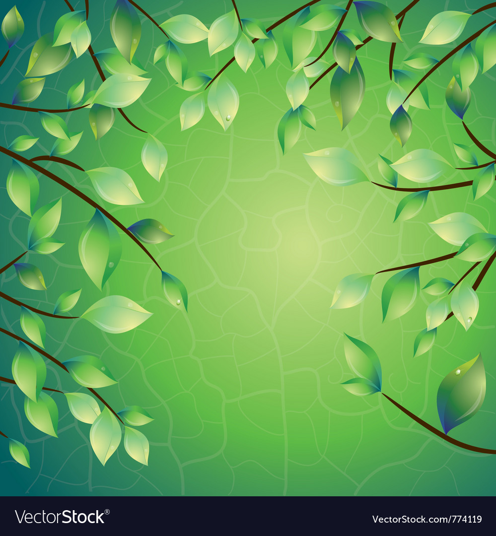 Spring leaves frame vector | Price: 3 Credit (USD $3)