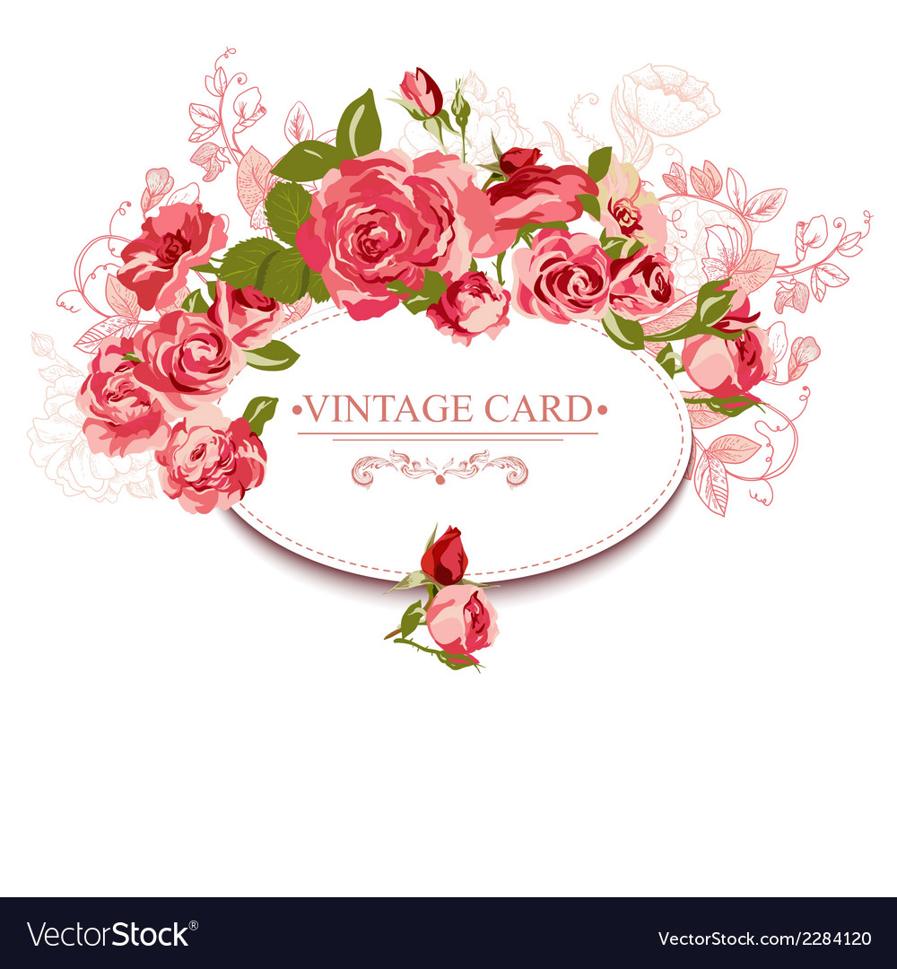 Vintage floral card with roses vector | Price: 1 Credit (USD $1)
