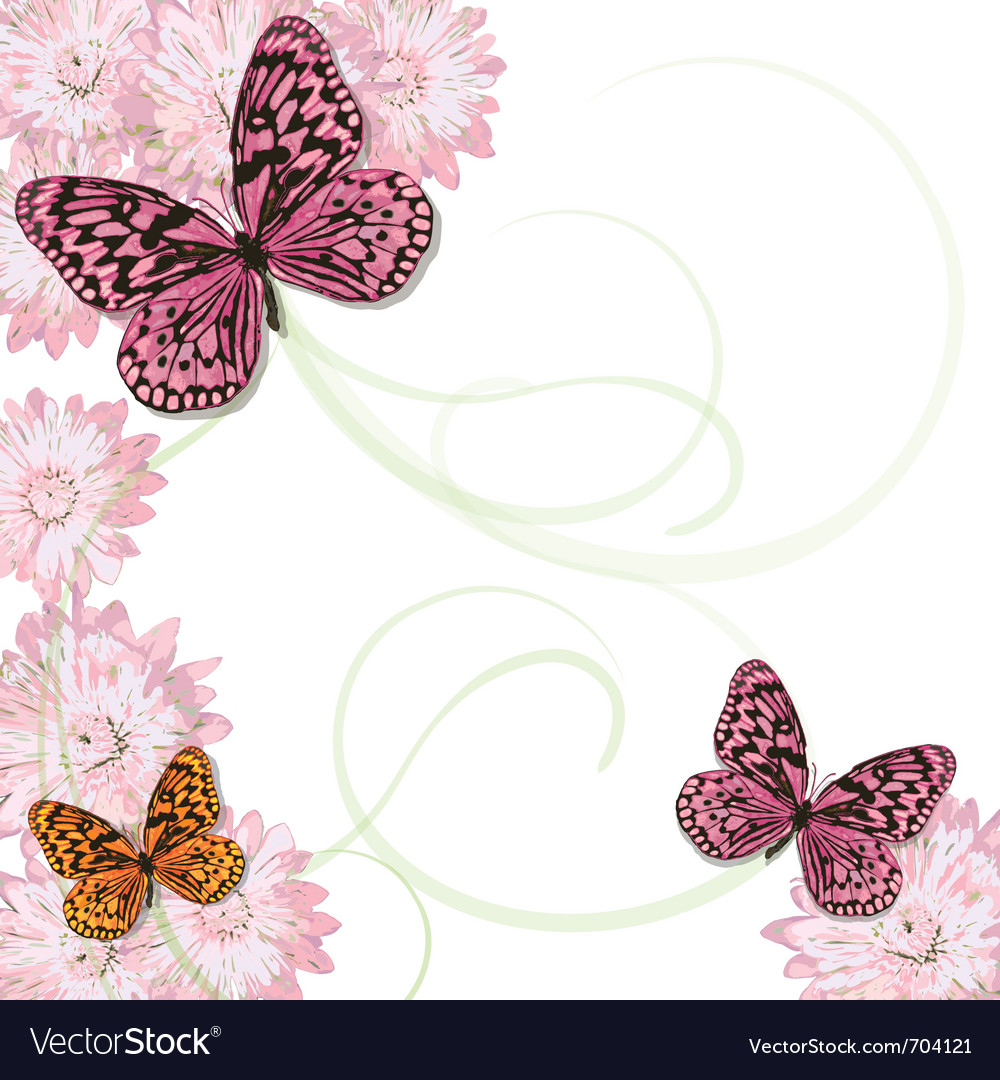 Butterflies and daisy invitation vector | Price: 1 Credit (USD $1)