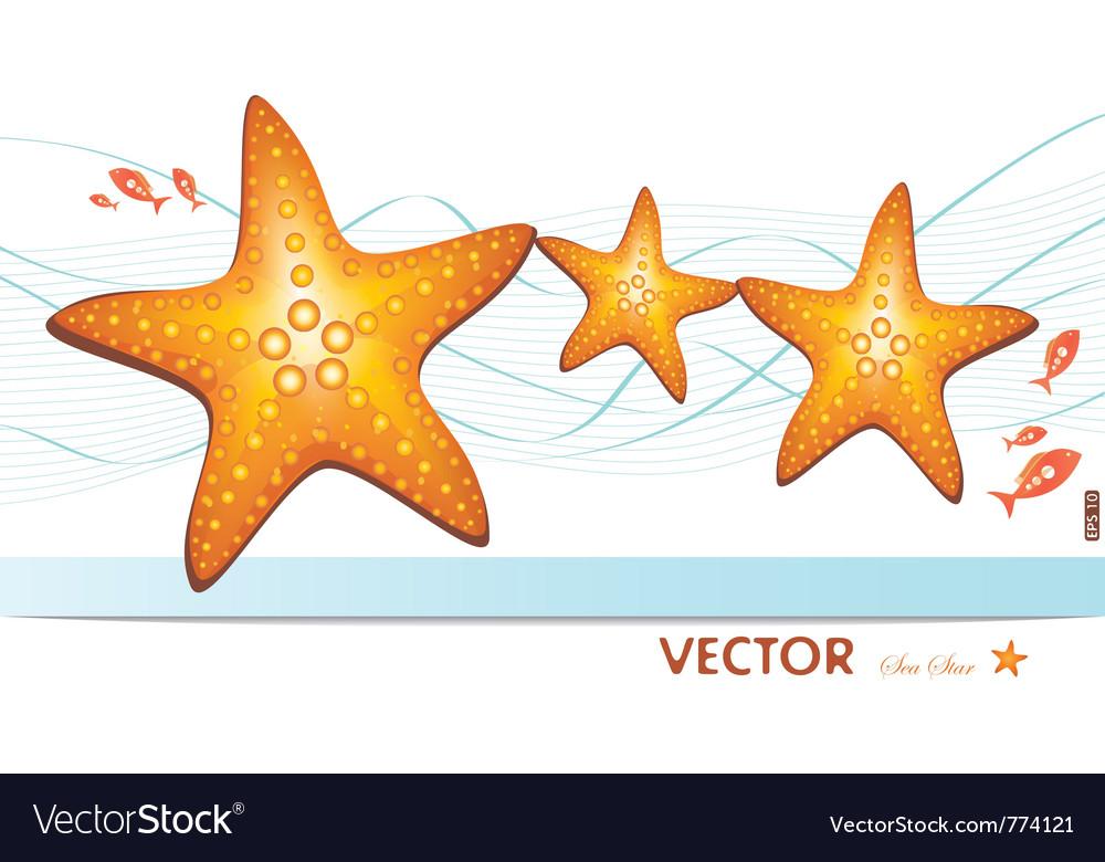 Happy family of sea-stars vector   Price: 3 Credit (USD $3)