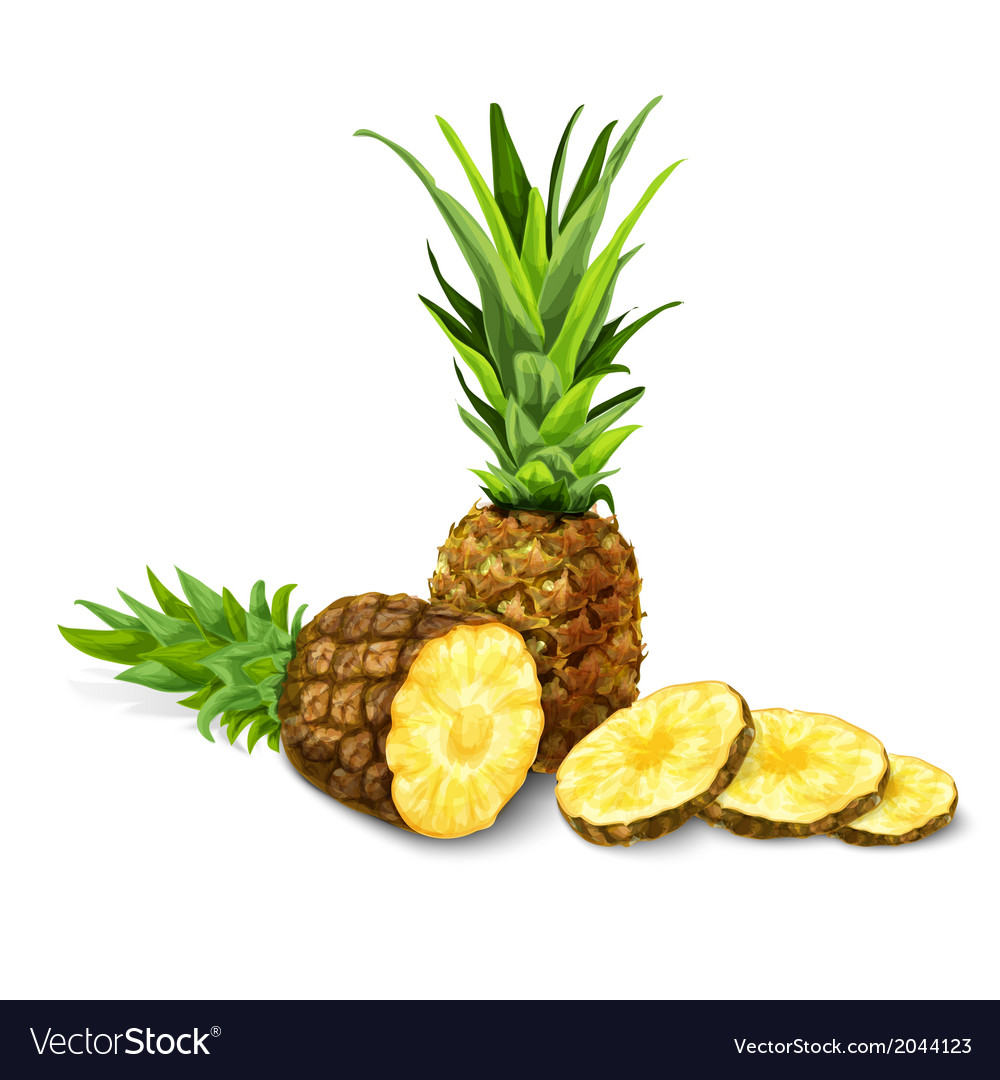 Pineapple isolated poster or emblem vector | Price: 1 Credit (USD $1)