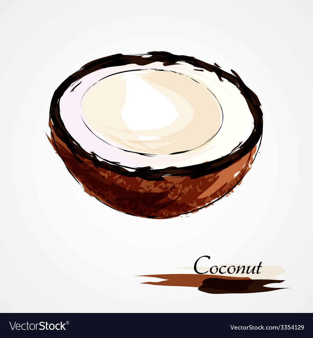 Coconut part portion vector | Price: 1 Credit (USD $1)