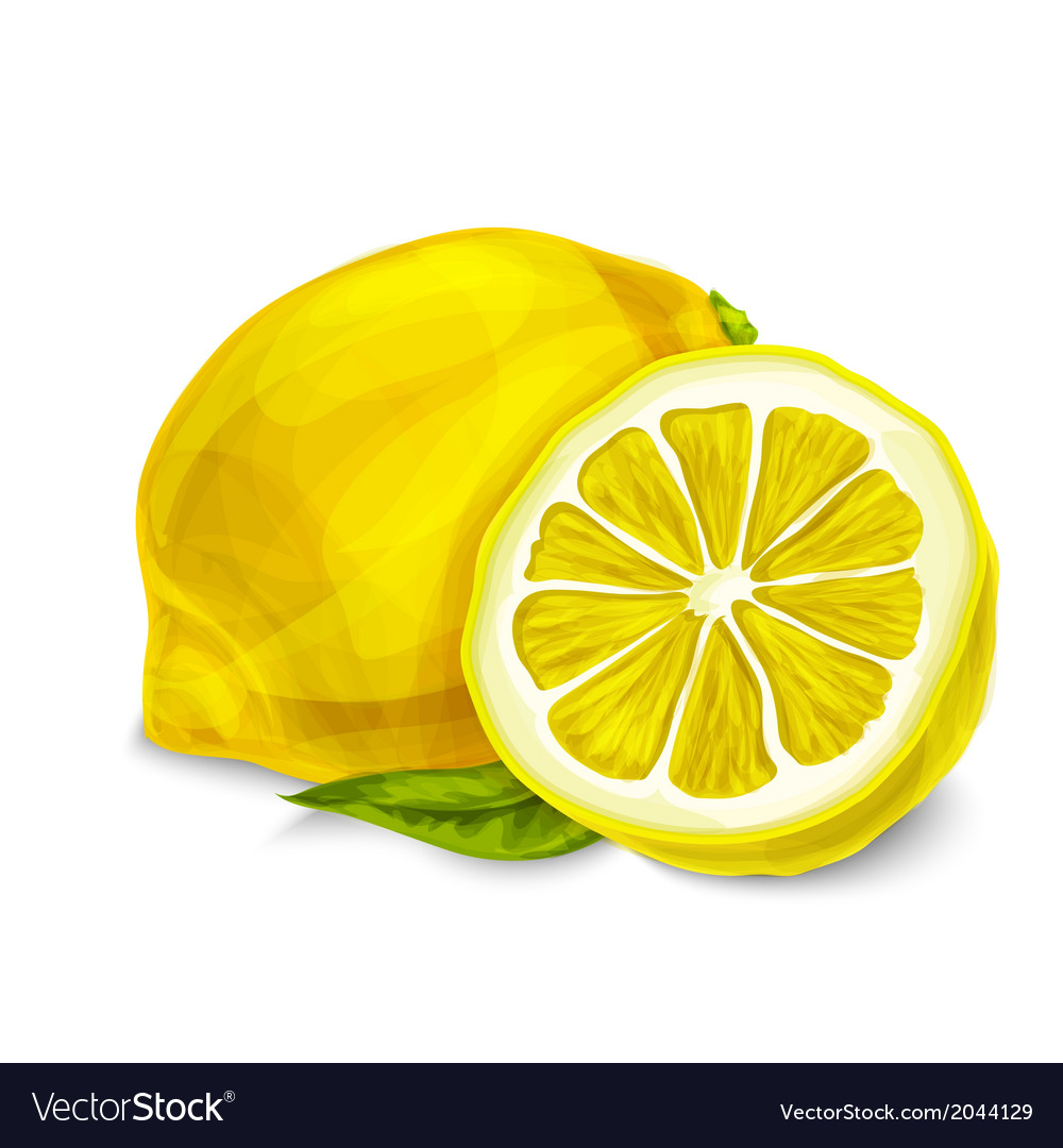 Lemon isolated poster or emblem vector | Price: 1 Credit (USD $1)