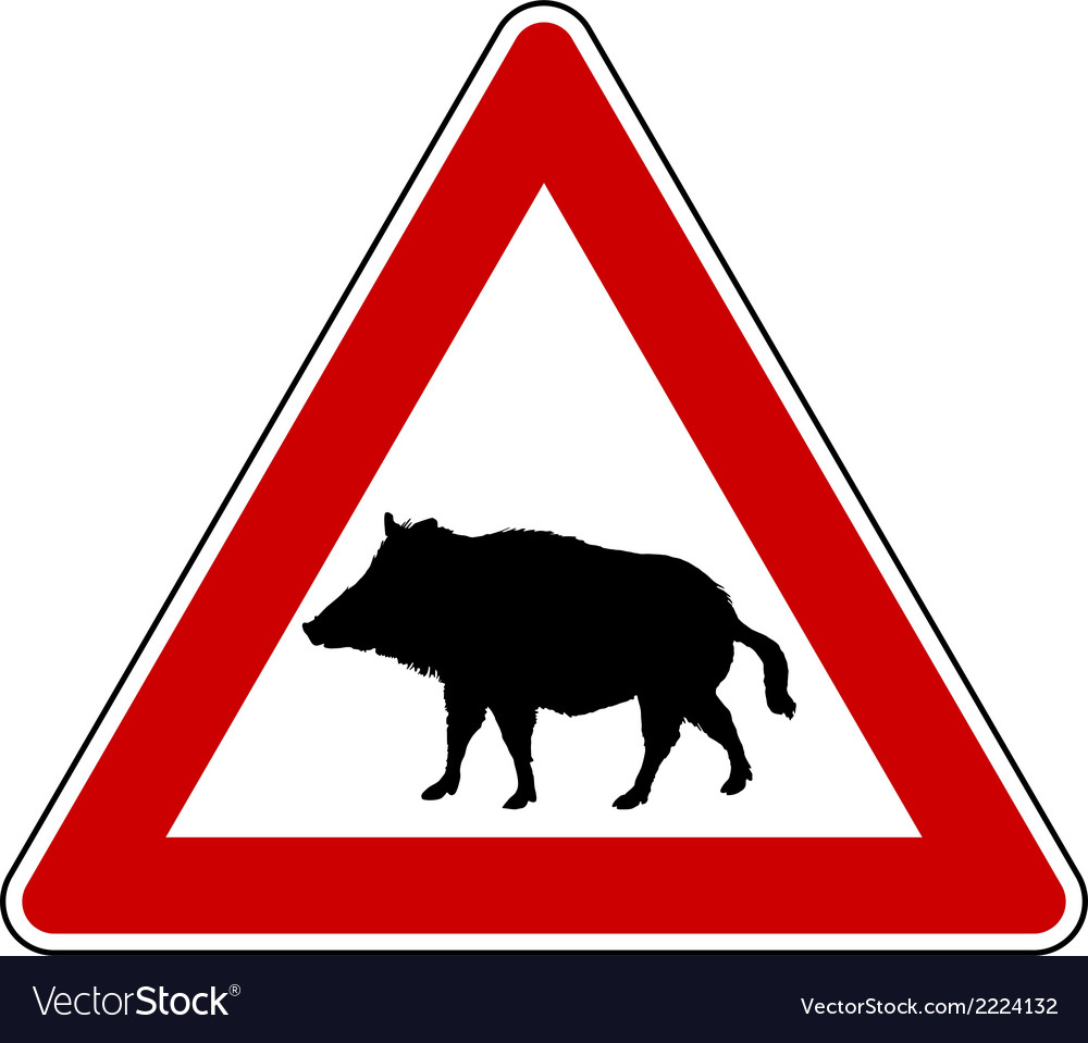 Wild pig warning sign vector | Price: 1 Credit (USD $1)