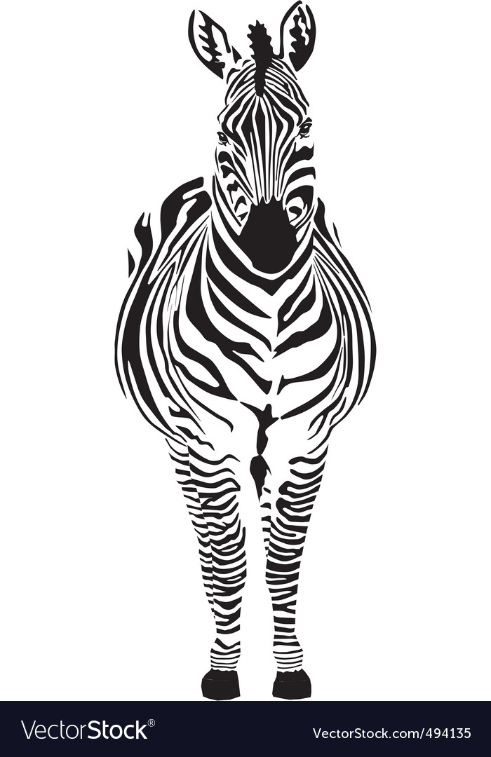 Zebra black and zero vector | Price: 1 Credit (USD $1)