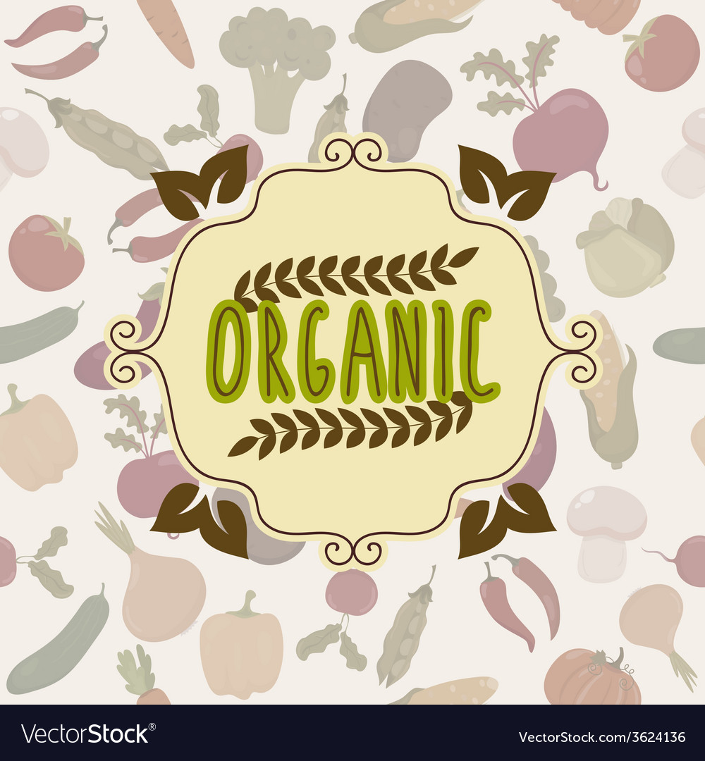Organic food frame vegetables pattern vector | Price: 1 Credit (USD $1)