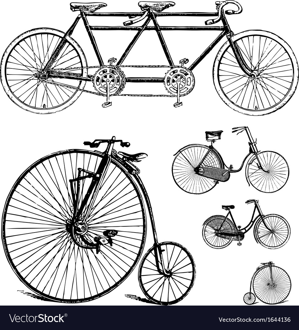 Vintage bicycle set vector | Price: 1 Credit (USD $1)