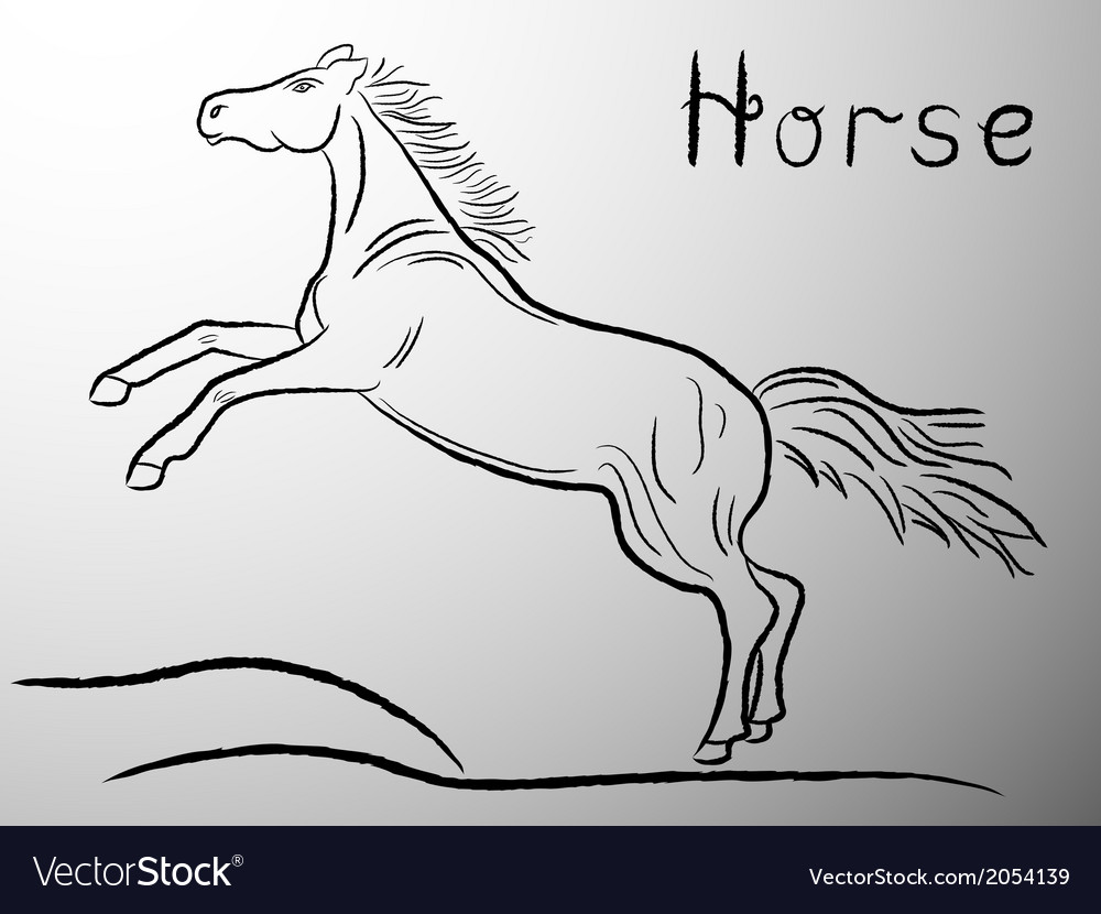 Graceful horse contour vector | Price: 1 Credit (USD $1)