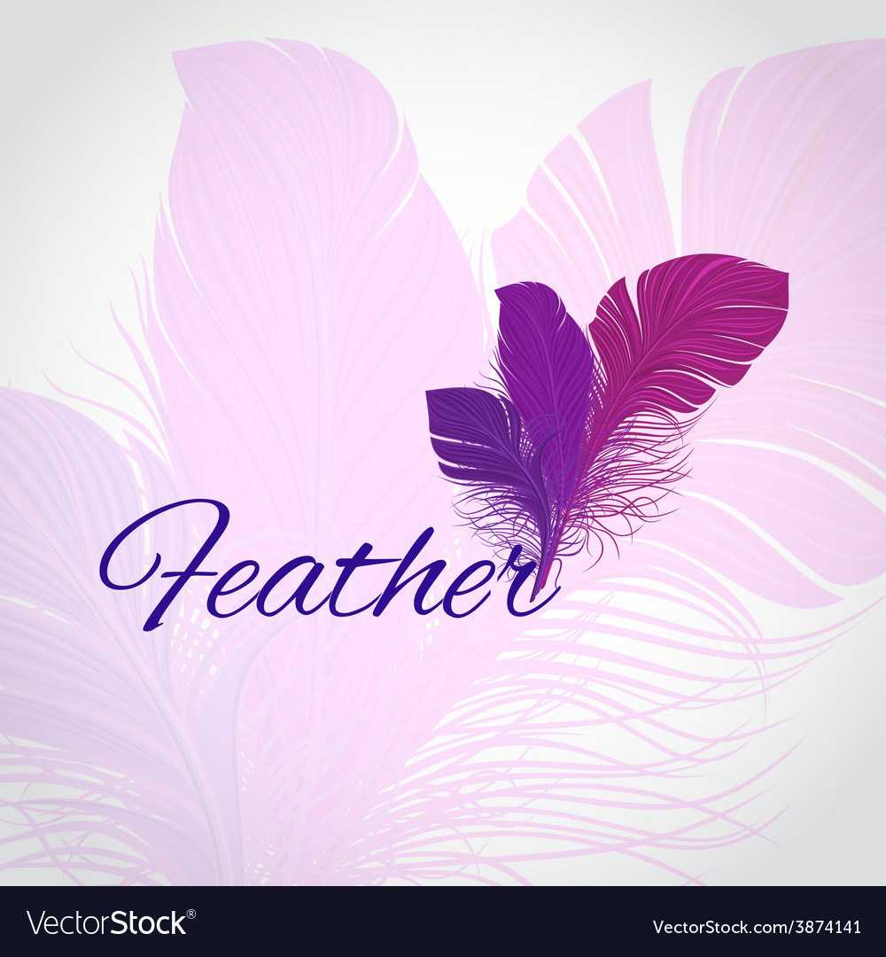 Feather abstract background vector | Price: 1 Credit (USD $1)